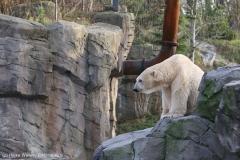 Zoo_Hannover_231215_IMG_2625