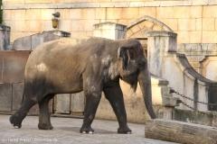 Zoo_Hannover_231215_IMG_2694
