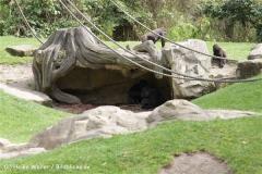Zoo_Hannover_120427-IMG_6486