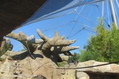 Zoo_Hannover_270913_IMG_4626_2855