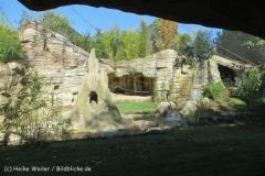 Zoo_Hannover_270913_IMG_4631_2861
