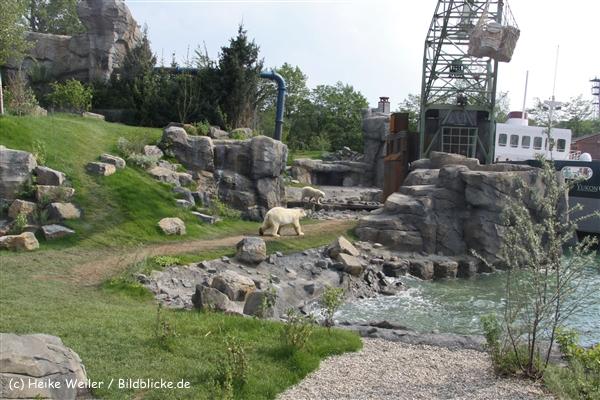 Zoo-Hannover-280510-IMG_2388