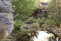 Zoo_Hannover_301015_IMG_0844_1276