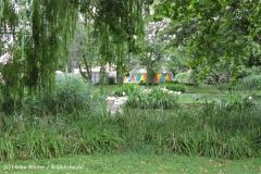 Zoo Koeln 230710- IMG_7938_1409