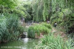 Zoo Koeln 230710- IMG_8527_1448