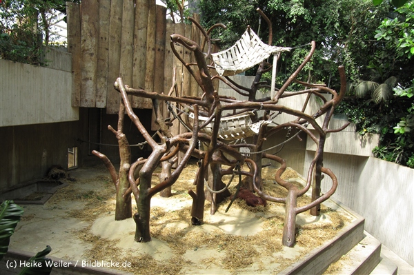 Zoo Krefeld 240710- IMG_8941_1505
