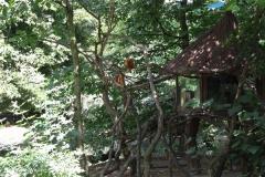 Zoo Krefeld 240710- IMG_8916_1503
