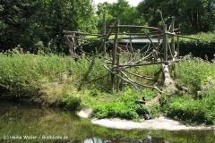 Zoo Krefeld 240710- IMG_9083_1513