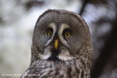 Zoo-Magdeburg-070410-IMG_9671