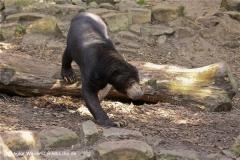 Zoo-Muenster-260909IMG_5770
