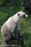 Zoo_Osnabrueck_230712_IMG_8003