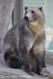 Zoo_Osnabrueck_230712_IMG_8006