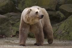 Zoo-Osnabrueck-250410-IMG_0922