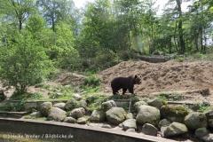 Zoo_Schwerin_100513_IMG_1473_1801