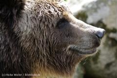 Zoo_Schwerin_100513_IMG_1481