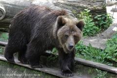 Zoo_Schwerin_100513_IMG_1482